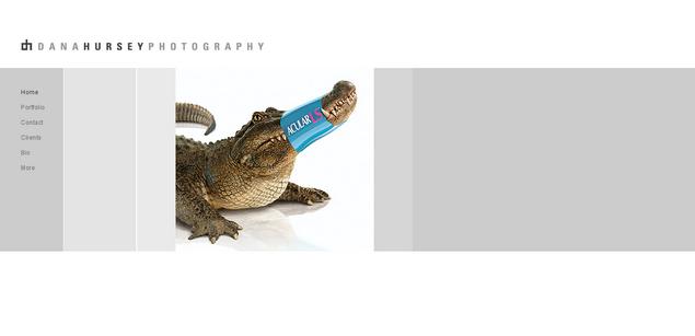 Dana Hursey Photography www_hursey_com_resize