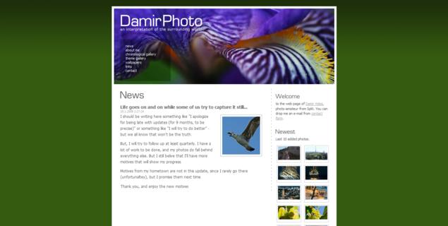 DamirPhoto