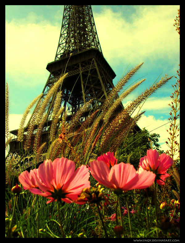 Paris__Eiffel_Tower____by_Faqy