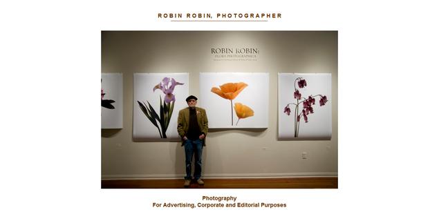 ROBIN ROBIN www_robinrobin_com