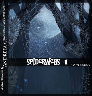 Spider_Webs_1_by_frozenstocks