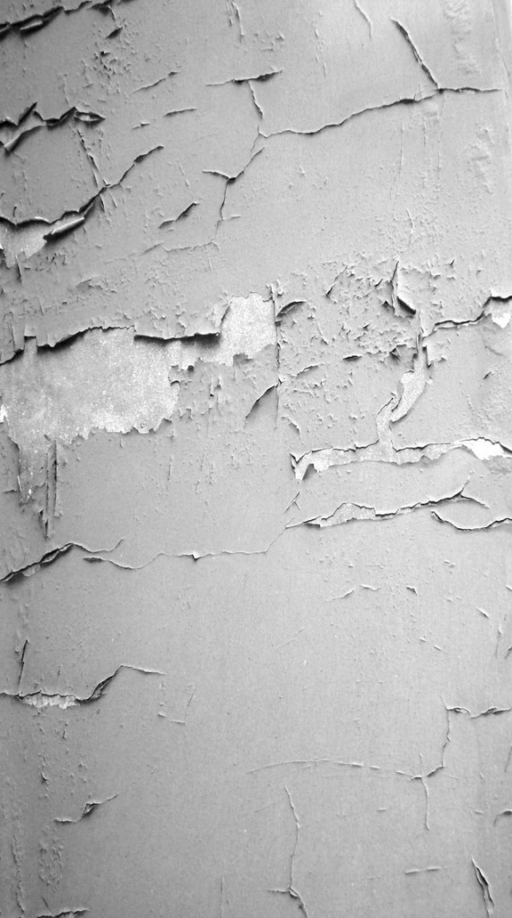 Torn_Texture_by_digitalcircus_stock