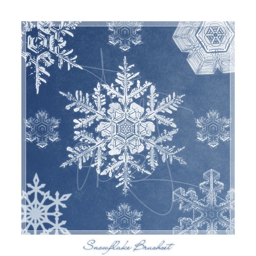 snowflake_brushes_by_meldir_resize